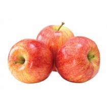 Apple - Royal Gala1